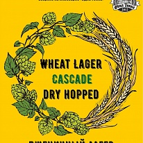 """Wheat Lager Cascade dry hopped"""
