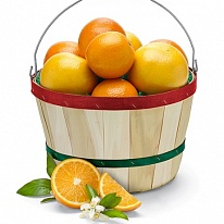 """Citrus Basket"""